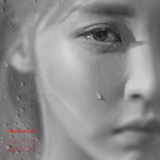 Thương idol rơi nước mắt trên ảnh bìa, fan của MAMAMOO lấy hẳn tiền, xô chậu để hong khô dòng lệ - Ảnh 1.