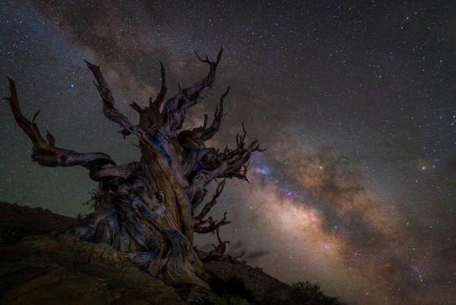 Nín thở trước 25 bức ảnh Thiên văn tuyệt vời nhất năm 2018 - Ảnh 14.