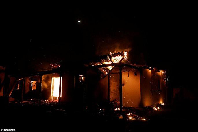 Thủ đô Hy Lạp rực lửa, ít nhất 24 người chết và hàng trăm người bị thương do cháy rừng - Ảnh 2.