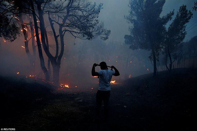 Thủ đô Hy Lạp rực lửa, ít nhất 24 người chết và hàng trăm người bị thương do cháy rừng - Ảnh 3.