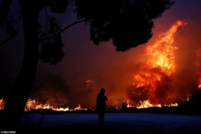 Thủ đô Hy Lạp rực lửa, ít nhất 24 người chết và hàng trăm người bị thương do cháy rừng - Ảnh 5.