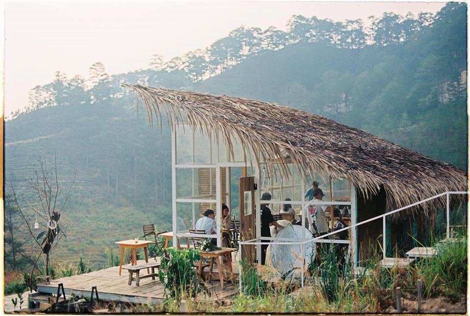 3 homestay ở Đà Lạt để bạn ểnh ương ngủ nướng rồi đọc sách, uống trà cả ngày không chán - Ảnh 8.