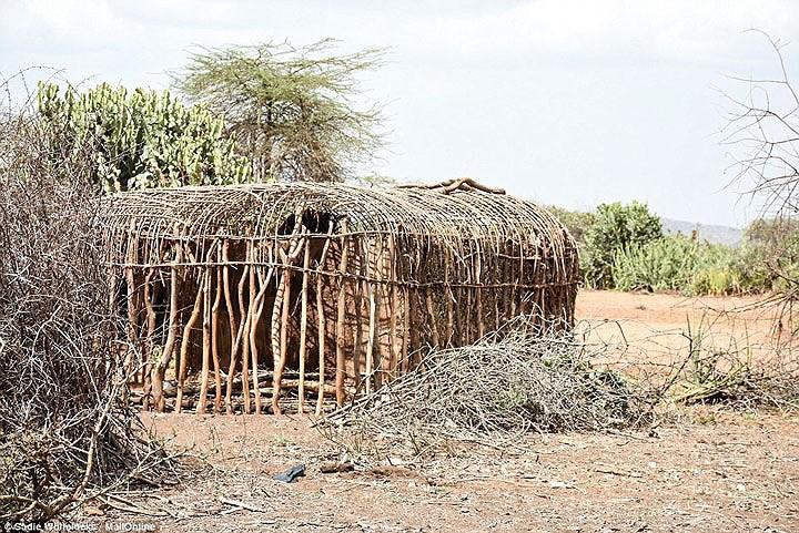 Bộ tộc sống theo truyền thống cổ xưa, 10 người ngủ trên 1 chiếc giường - Ảnh 8.