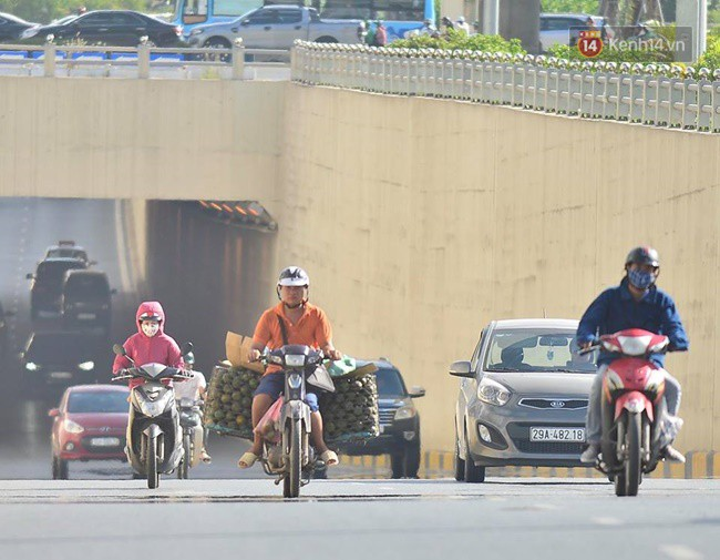 Hà Nội: Mặt đường bốc hơi dưới cái nắng nóng 40 độ, công nhân công ty cây xanh phải che lá chống nắng - Ảnh 1.