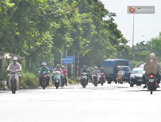 Hà Nội: Mặt đường bốc hơi dưới cái nắng nóng 40 độ, công nhân công ty cây xanh phải che lá chống nắng - Ảnh 3.