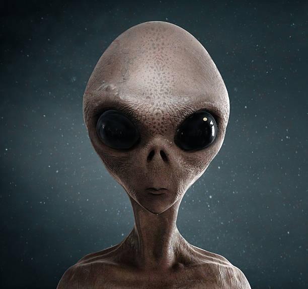Đố bạn nhận ra đây là ông bầu Vũ Khắc Tiệp, thoáng qua ai cũng tưởng là nhìn thấy Alien... - Ảnh 4.