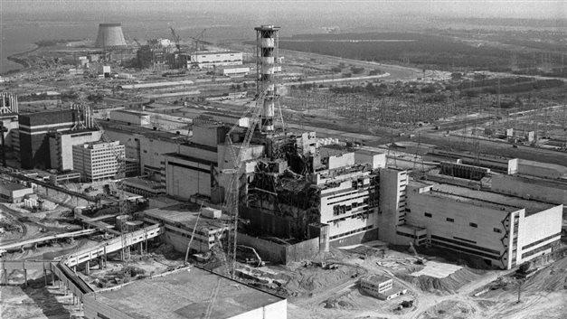 Con sói đầu tiên trong lịch sử rời khỏi Chernobyl, giới khoa học đang phải bám rất sát - Ảnh 1.