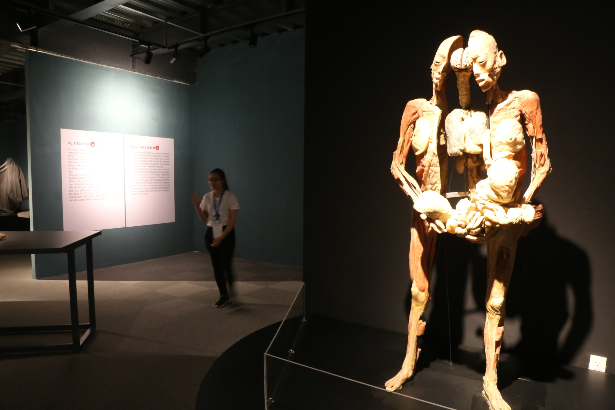 Thi thể người phụ nữ bị chia cắt thành hai trông khá rùng rợn với khách tham quan.