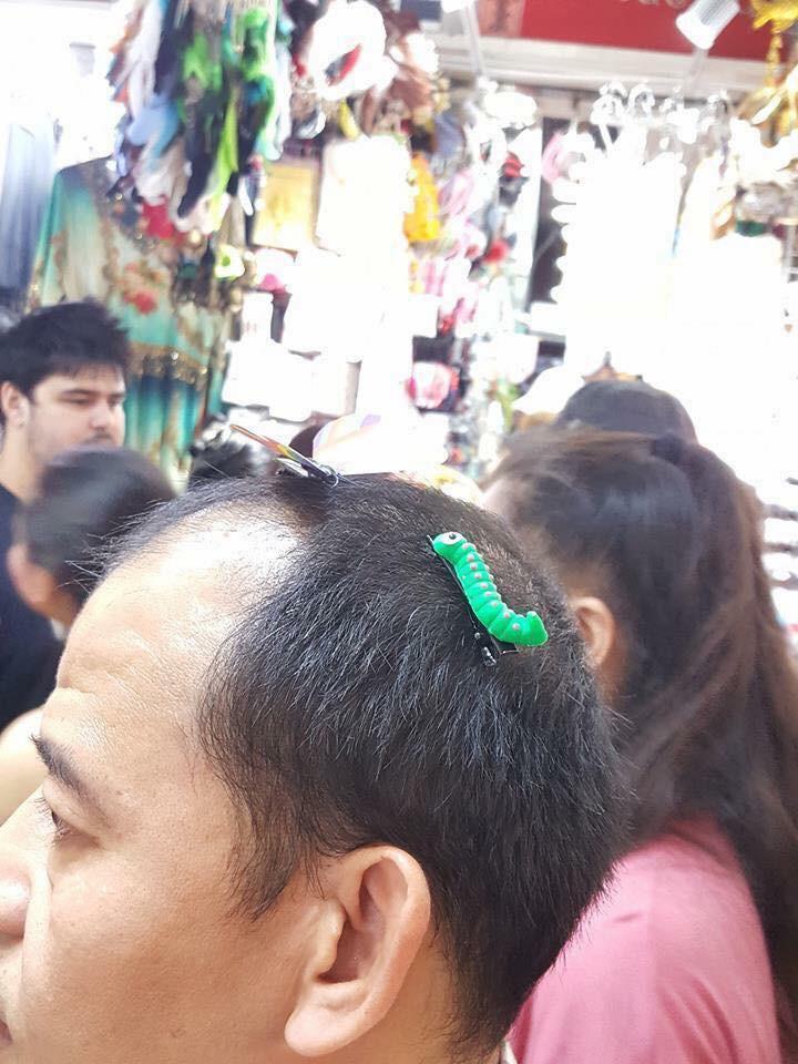 Cặp tóc thạch sùng, cặp tóc gián gây bão mạng xã hội - Ảnh 3.