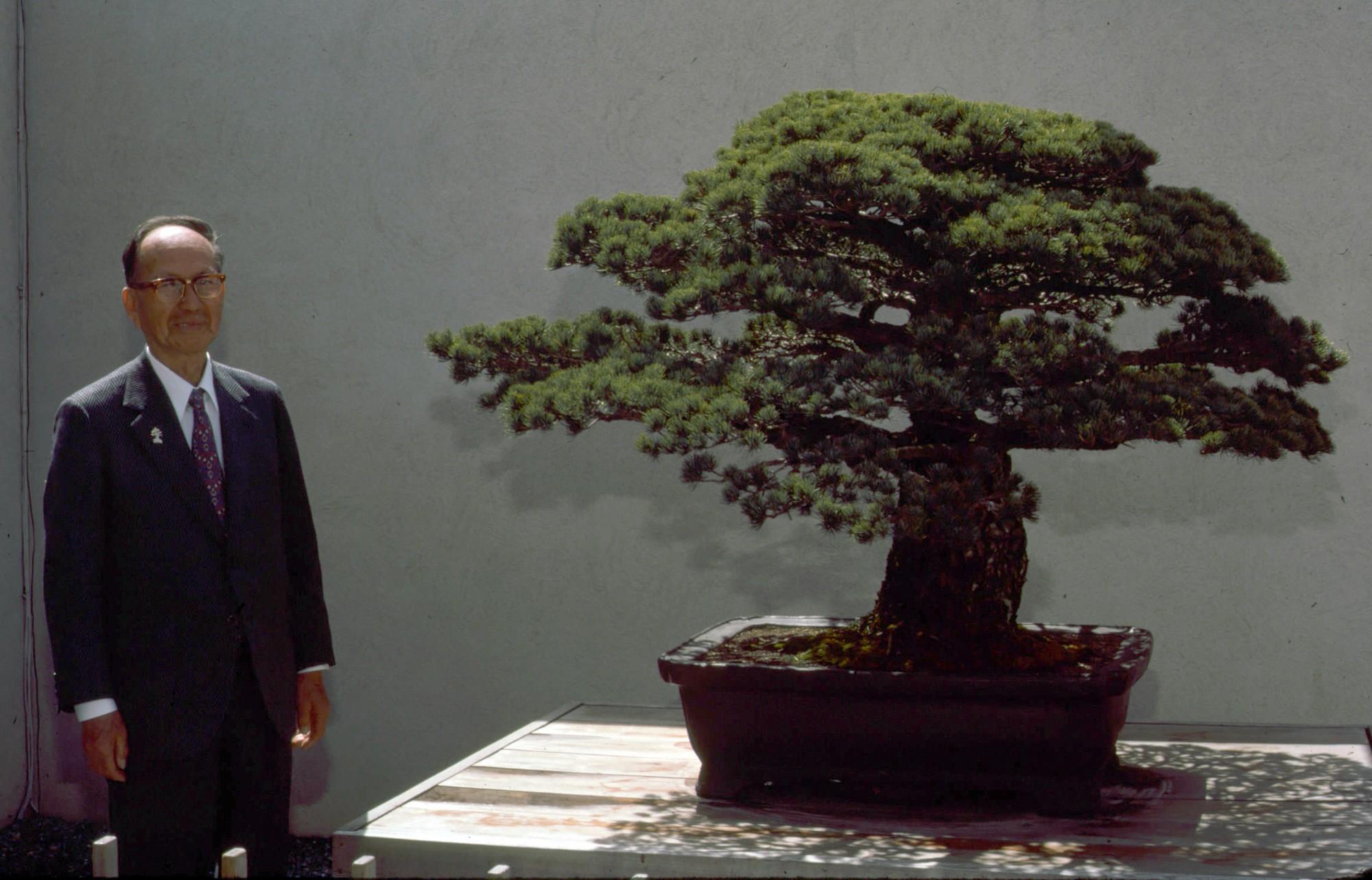 Cây bonsai Nhật Bản 400 tuổi: Nhân chứng lịch sử thảm họa Hiroshima với sức sống mãnh liệt, bom nguyên tử cũng không thể quật ngã - Ảnh 6.