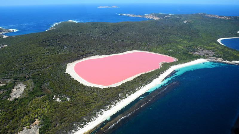 Hồ màu hồng lạ lùng giữa vùng đảo nước Úc: Điều gì tạo nên màu sắc thú vị này? - Ảnh 2.