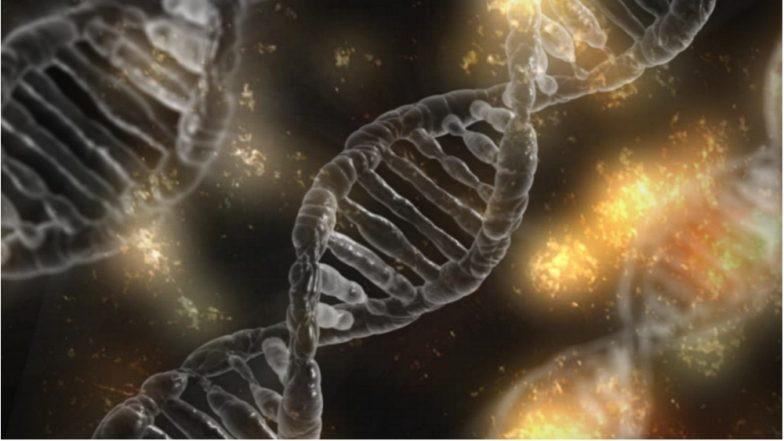 Phát hiện trường hợp cực hiếm: bé gái sinh ra với gần 100% gene từ người bố, và đó không phải là điều may mắn đâu - Ảnh 2.