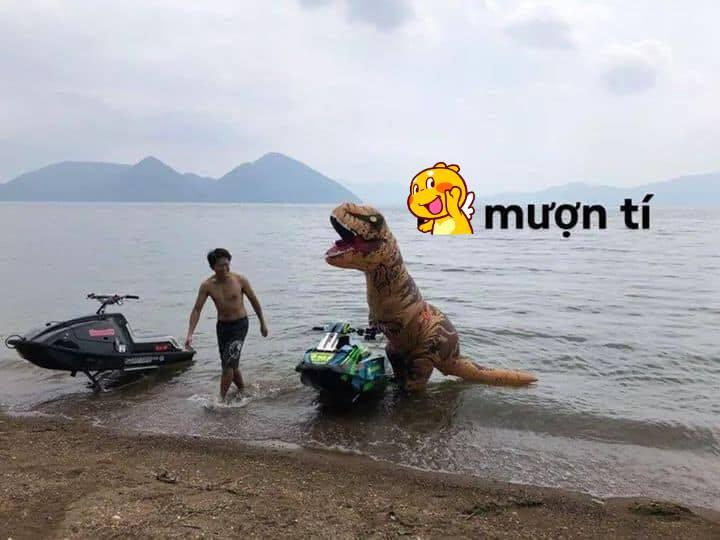 Chùm ảnh chú khủng long tập lái mô tô nước khiến cộng đồng mạng cười như được mùa - Ảnh 1.