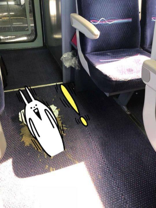 Chuyến tàu ác mộng: Chú chó vô tư lên tàu giải quyết nỗi buồn, hành khách cắn răng ngồi chịu đựng mùi hôi hám suốt 4 tiếng đồng hồ - Ảnh 1.
