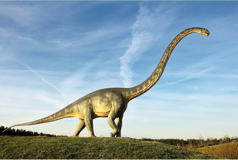 Đoạn video đàn khủng long qua suối được chia sẻ dữ dội trên MXH quốc tế, dân mạng phải mất một lúc mới nhận ra sự thật - Ảnh 2.