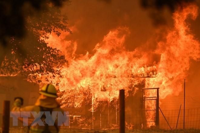Cháy rừng đe dọa hàng nghìn gia đình tại thành phố Los Angeles - Ảnh 1.