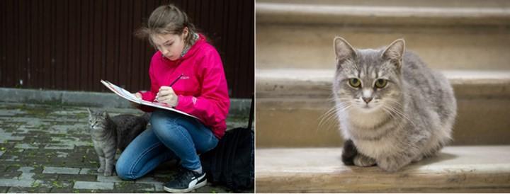"""Những chú mèo nổi tiếng """"làm việc"""" cho các viện bảo tàng ở Nga - Ảnh 8."""