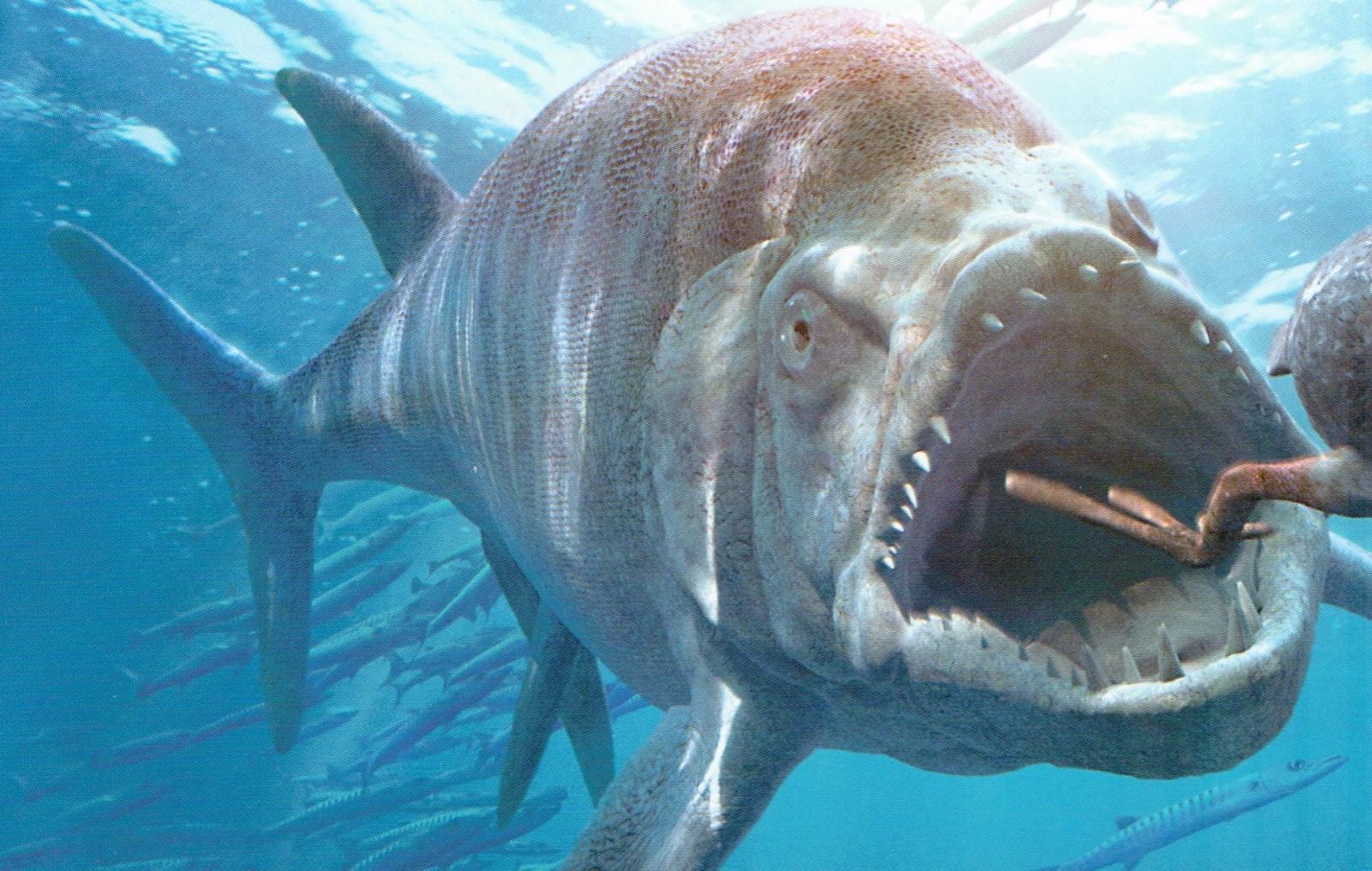 Đây là 5 con quái vật tiền sử cũng xứng đáng được lên phim giống Megalodon - Ảnh 4.