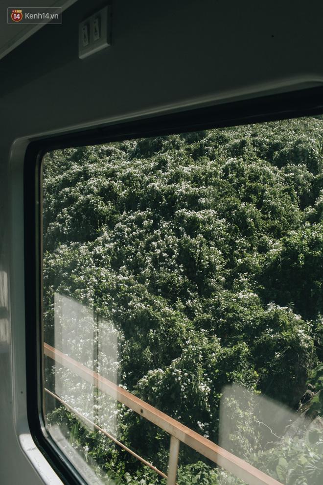 Hãy thử 1 lần đi du lịch bằng tàu hoả để tận hưởng cảm giác mùa hè lướt ngoài cửa sổ - Ảnh 16.