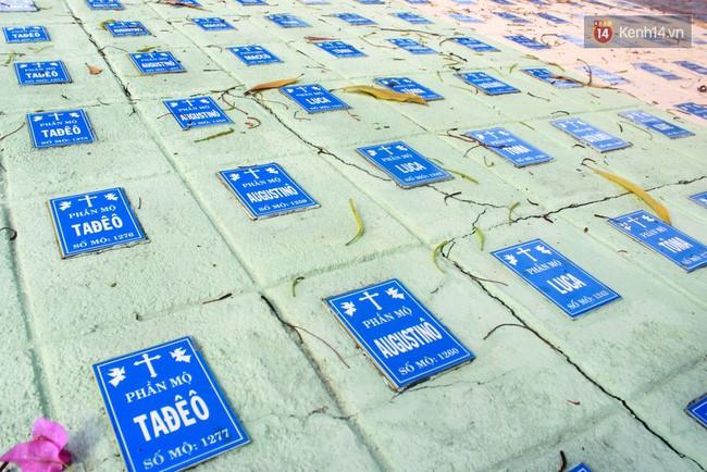 Chuyện xúc động về một người cha nghèo 14 năm chôn cất 20 nghìn hài nhi, cưu mang hàng trăm đứa bé mồ côi ở Nha Trang - Ảnh 4.
