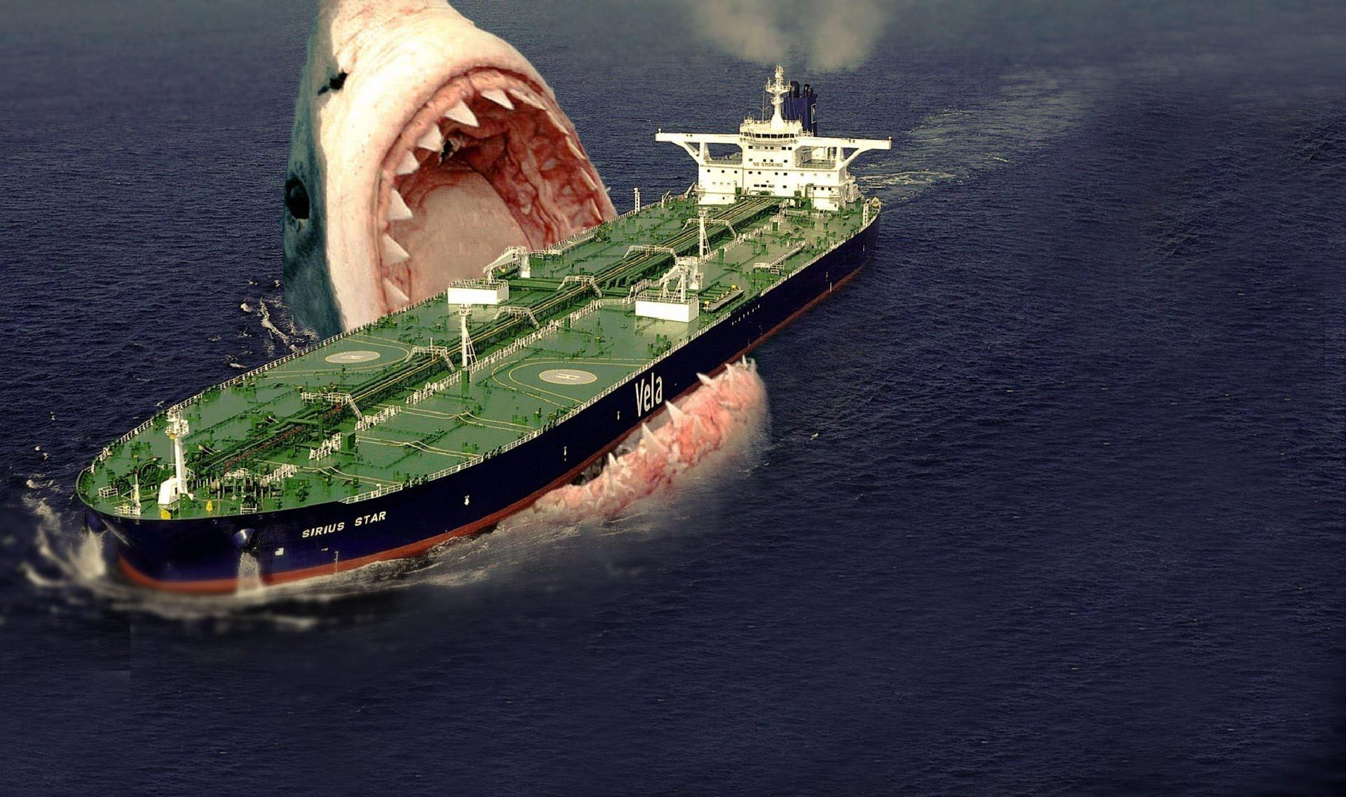95% đại dương chưa được khai phá, vậy có khả năng nào Megalodon vẫn