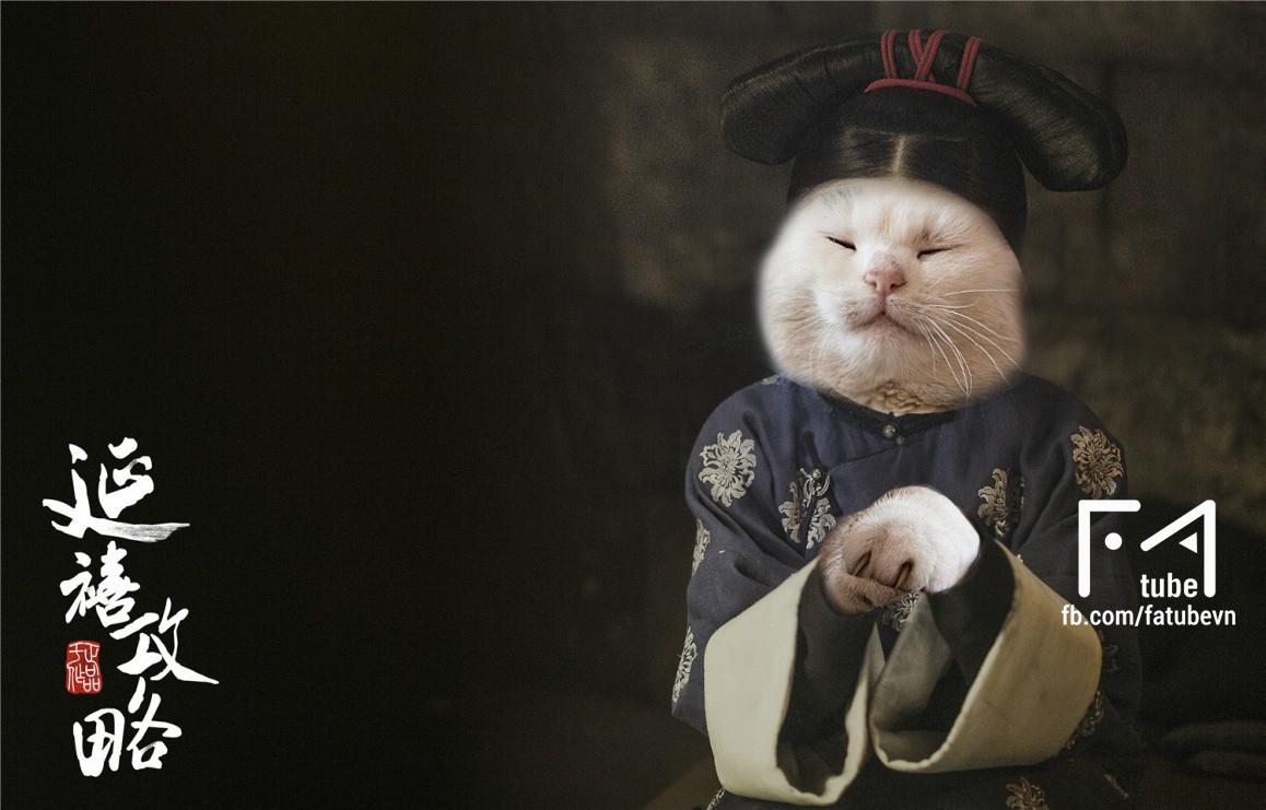 Chùm ảnh: Diên Hi Công Lược phiên bản chó mèo cho các sen xem tạm trong lúc đang hoang mang chuyện dừng phát sóng - Ảnh 6.