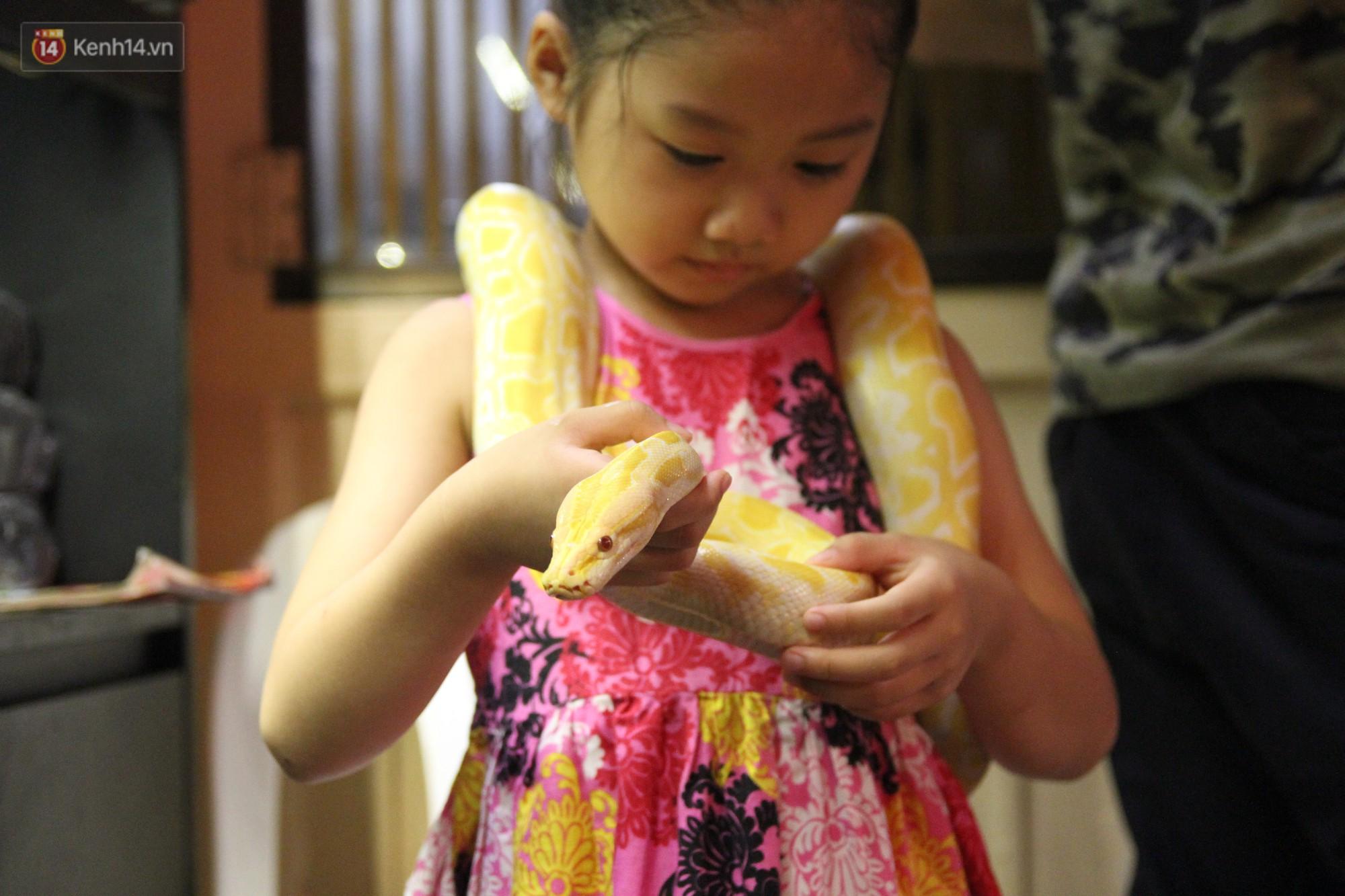 Ông bố trẻ ở Hà Nội và bộ sưu tập những con vật nhìn thôi đã sợ: Đủ các loài rắn, nhện, ếch cho đến rồng đất - Ảnh 12.