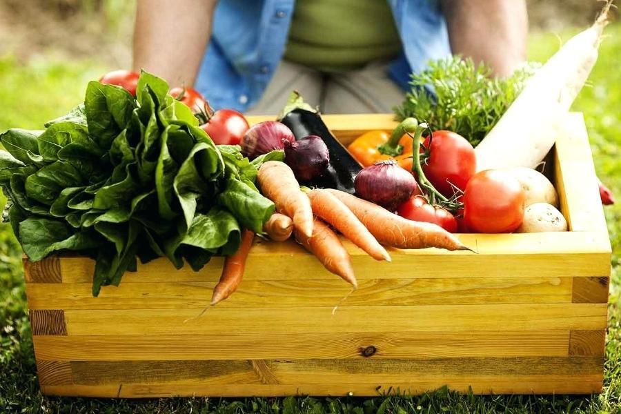 Những loại thực phẩm nên được sử dụng trong chế độ Detox kết hợp ăn uống - Ảnh 3.