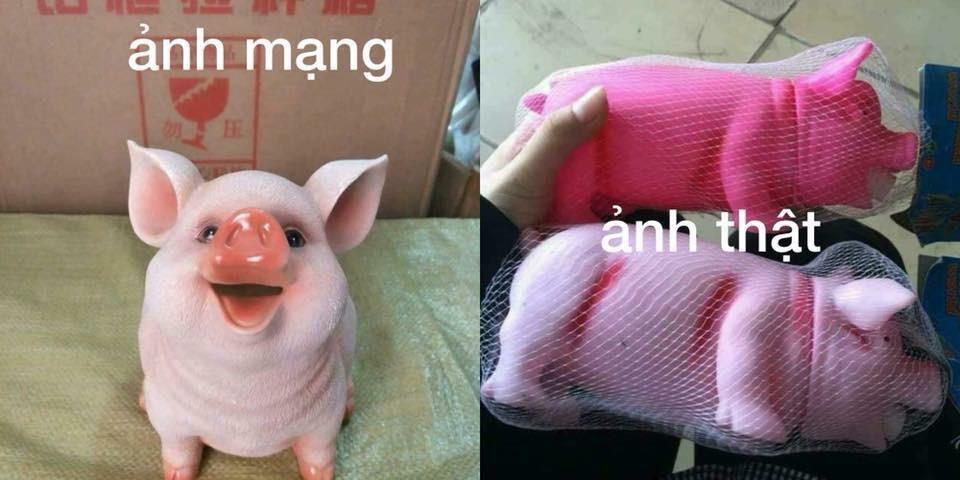 Đặt mua heo hồng cute qua mạng, thanh niên nhận về con lợn nhựa mặt mũi không thể gian manh hơn - Ảnh 3.