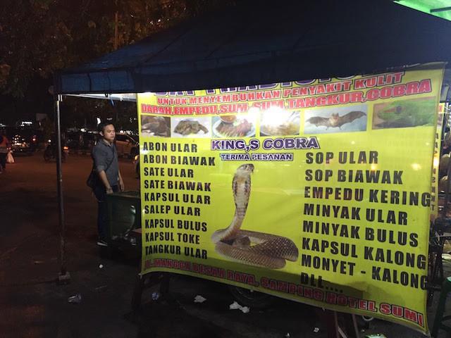 Người mát xa là xưa rồi, qua Indonesia nhớ thử đi mát xa rắn nha! - Ảnh 1.