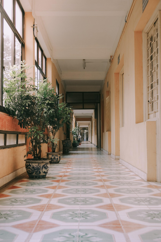Ở Hà Nội có 1 ngôi trường mà đến cái thùng rác cũng là 1 góc sống ảo so deep - Ảnh 5.