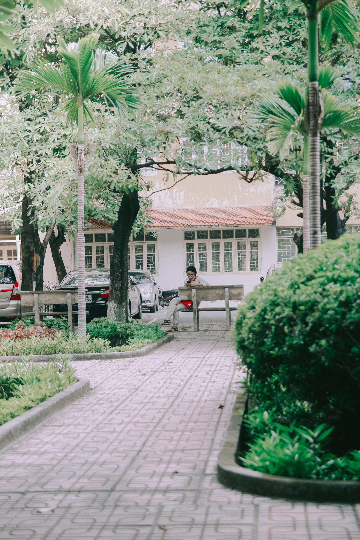 Ở Hà Nội có 1 ngôi trường mà đến cái thùng rác cũng là 1 góc sống ảo so deep - Ảnh 24.