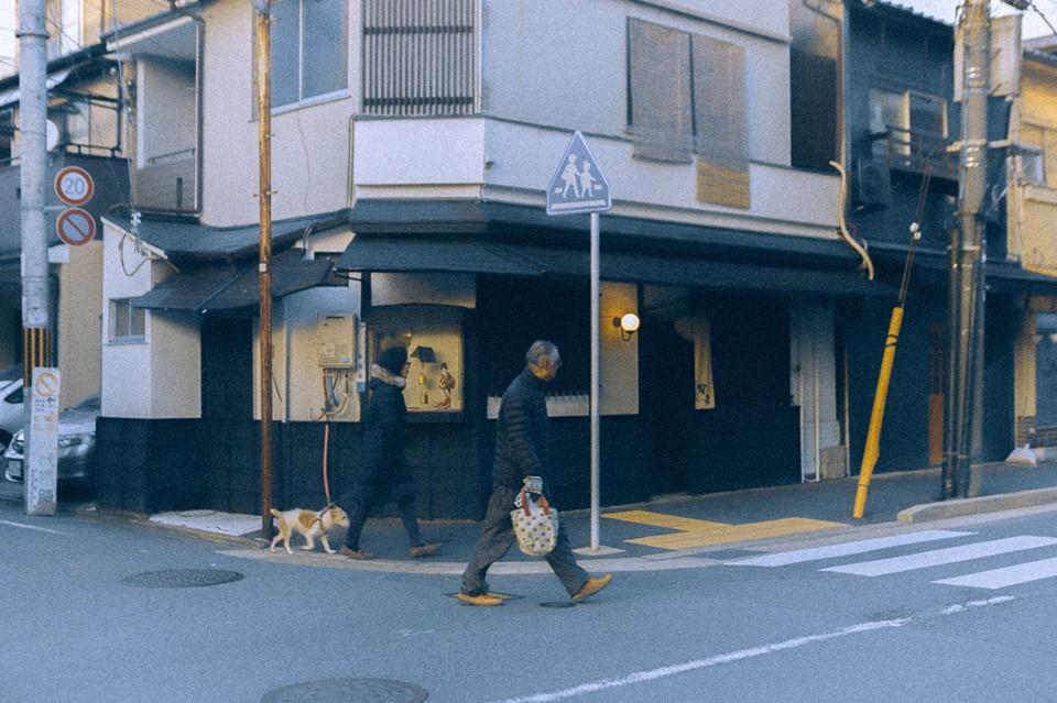Bộ ảnh ở Kyoto này sẽ cho bạn thấy một Nhật Bản rất khác: Bình yên, dịu dàng và đẹp như những thước phim điện ảnh - Ảnh 7.