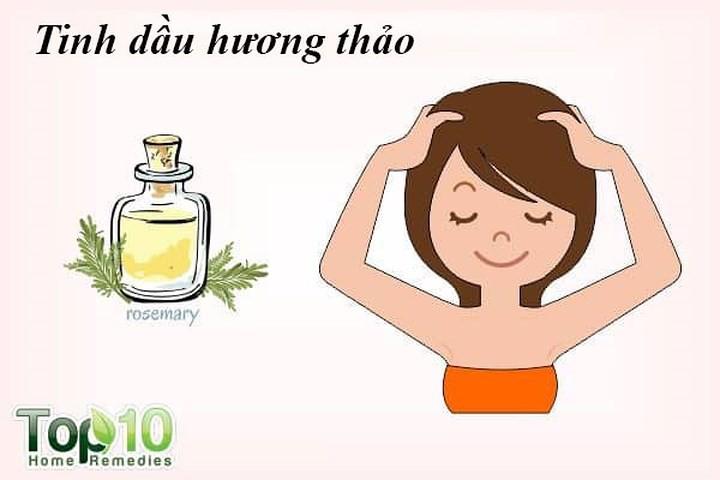 Mách nhỏ, 10 cách trị rụng tóc từ thiên nhiên hiệu quả nhất - Ảnh 2.