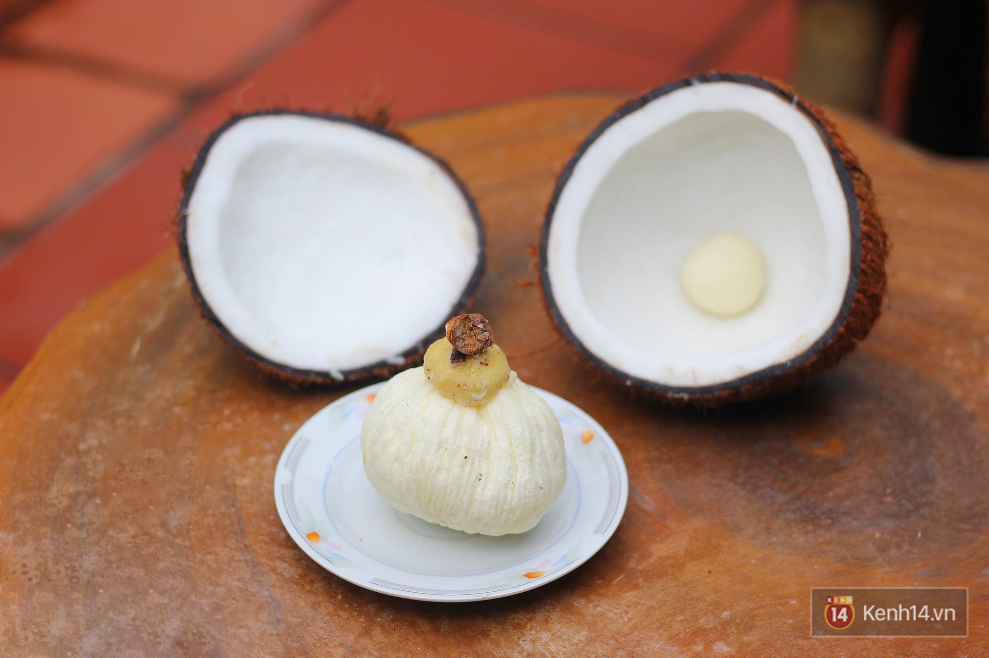 Mộng dừa là gì mà tận 300k/kg, muốn mua cũng không hề dễ? - Ảnh 7.