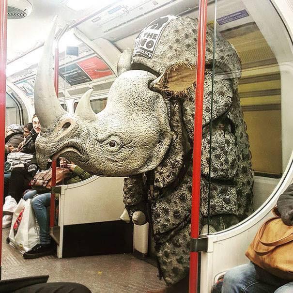 Những hình ảnh hài hước chỉ có trên tàu điện ngầm: Từ chị gái thái rau tới Pikachu thò tay ôm cột - Ảnh 16.