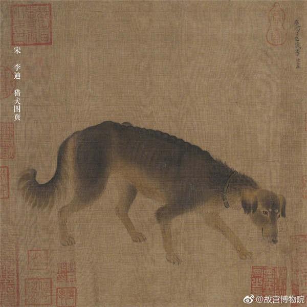 """Cún cưng của Cao Quý phi từng phá banh hoàng cung trong """"Diên Hi"""", nhưng số phận chó hoàng gia có đúng là đẹp như phim? - Ảnh 2."""