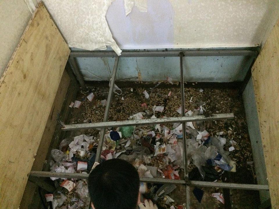 Lại xuất hiện cô gái siêu ở bẩn, ra ngoài phấn son lồng lộn, ở nhà thì xả rác ngập ngụa gầm giường - Ảnh 3.