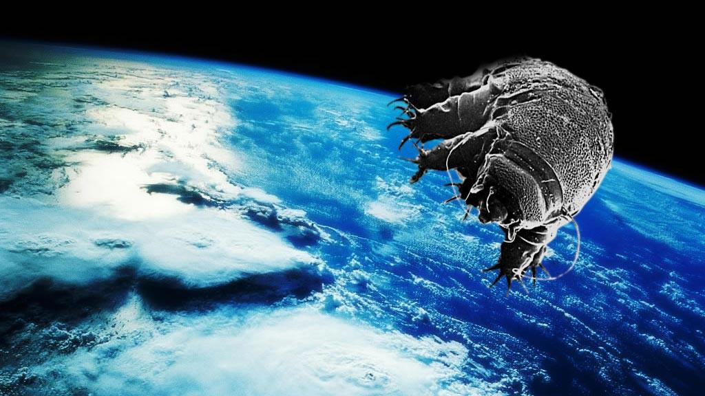 Trái đất có thể bị hủy diệt, nhân loại có thể biến mất, nhưng sự sống trên hành tinh này sẽ luôn tồn tại - Ảnh 6.