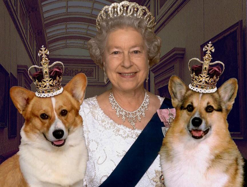 Úc: Chỉ cần gửi một cái email là có ngay chân dung nữ hoàng Anh miễn phí để treo lên tường nhà - Ảnh 1.