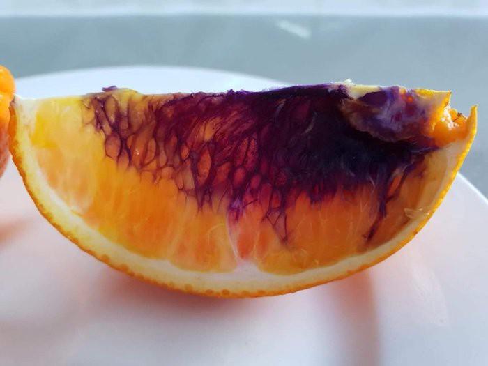 Miếng cam vàng óng ả bỗng hóa màu tím chỉ sau một đêm, và giới khoa học không hiểu tại sao - Ảnh 4.