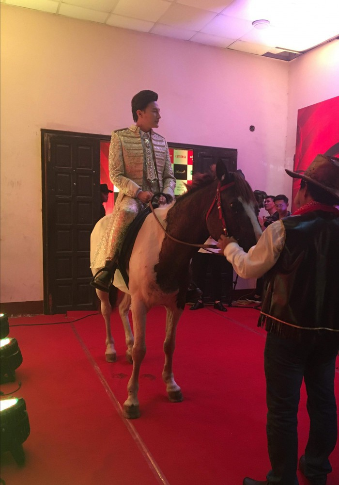 Thảm đỏ giải trínhất của năm: Nhân vật chính ăn diện sến sẩm, nhân vật phụ thì cưỡi ngựa làm lố - Ảnh 4.