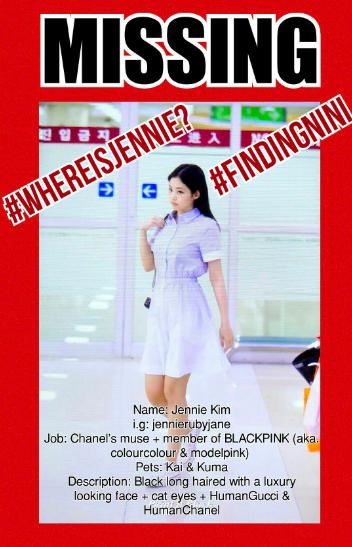 Fan Black Pink và câu hỏi đau đáu: Jennie biến mất đâu rồi? - Ảnh 10.
