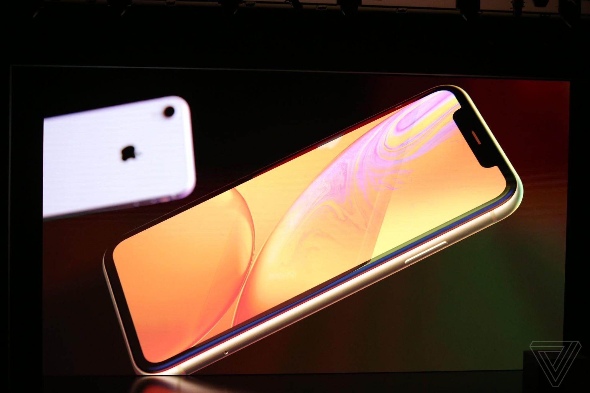 iPhone Xr đây rồi: nhìn như iPhone Xs, có màu xanh nước biển nhưng giá chỉ có 17 triệu thôi - Ảnh 1.