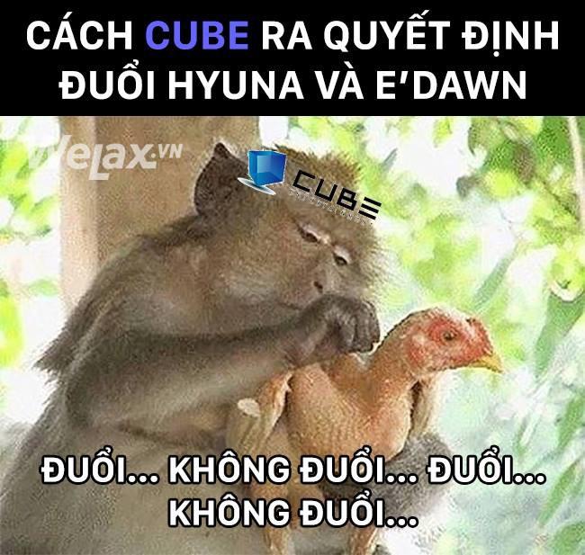 Cư dân mạng khi theo dõi drama nhà CUBE với HyunA và EDawn ngày hôm nay: Đuổi hay không đuổi nói một lời thôi!! - Ảnh 9.