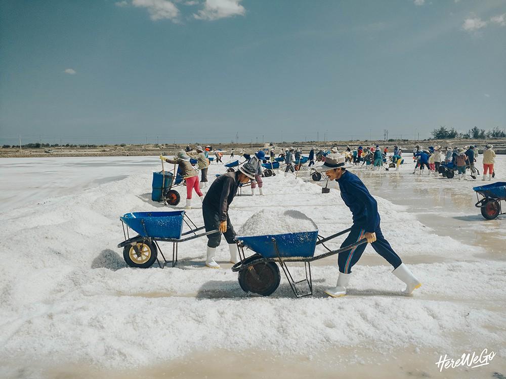Ninh Thuận: Vị ngọt nơi nắng gió, khắc nghiệt đất trời - Ảnh 15.