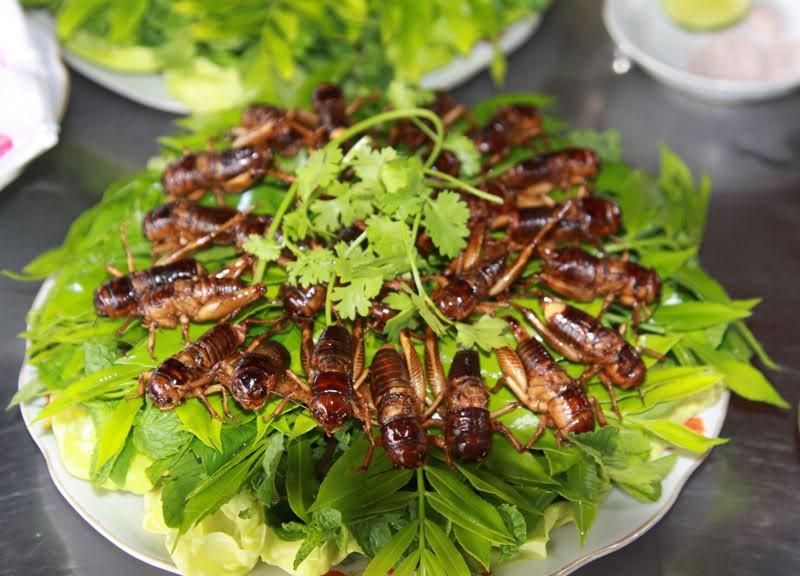 Ở vùng Long Khánh có một món đặc sản thử thách độ can đảm của nhiều người nhưng ai ăn xong cũng mắc ghiền - Ảnh 1.