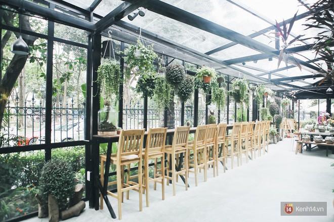 Hà Nội: 3 quán cà phê xanh mướt, mát rượi cực hợp để đi vào những ngày đầu thu - Ảnh 14.