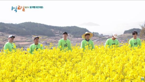 Show thực tế này có gì đặc biệt mà nhận được cả bằng khen của Tổng thống Hàn Quốc? - Ảnh 5.