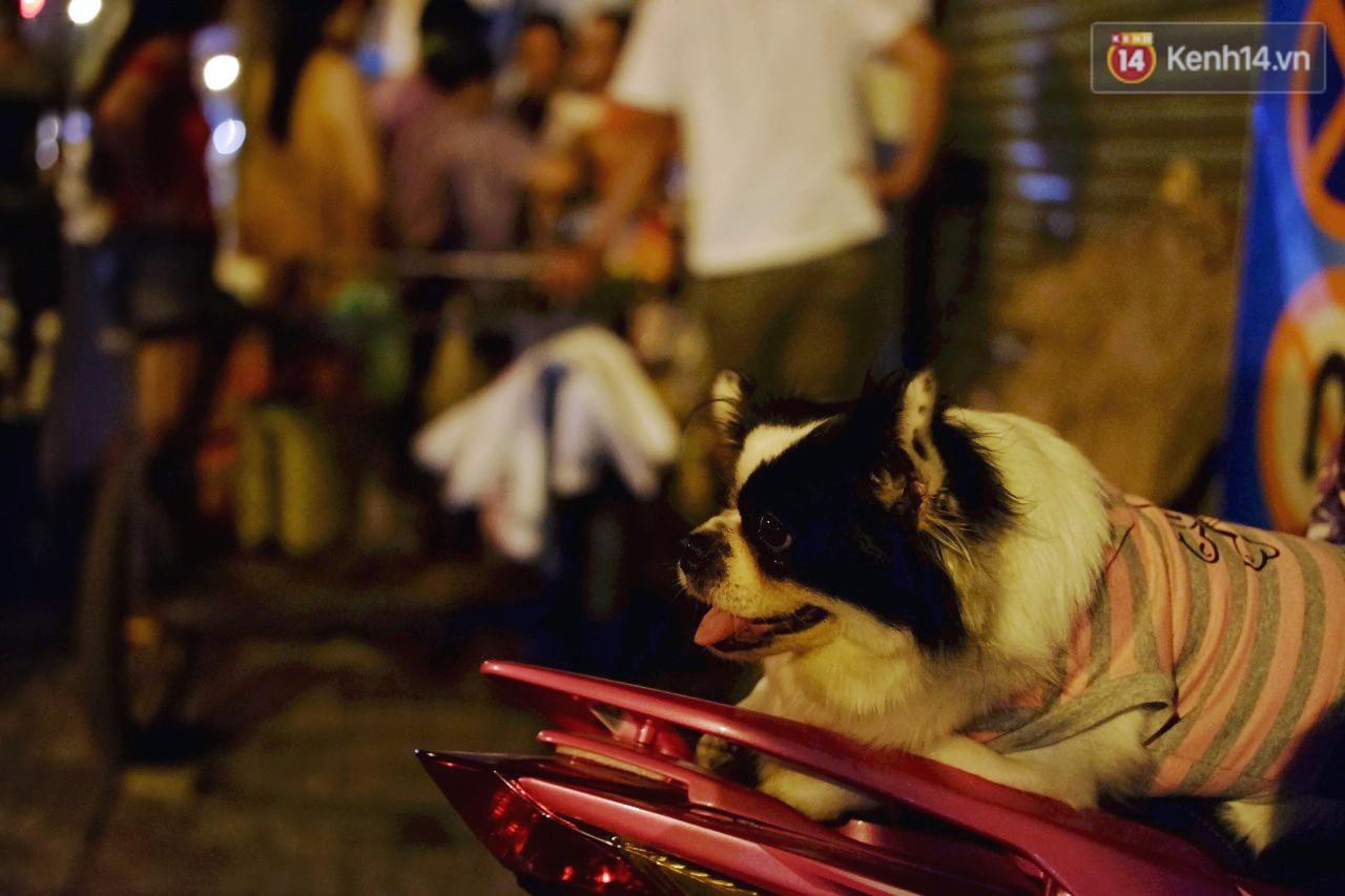Trà đào chờ 30 năm ở vỉa hè Sài Gòn: Đông khách tới 2 giờ sáng, xếp hàng cả tiếng đồng hồ mới mua được - Ảnh 7.